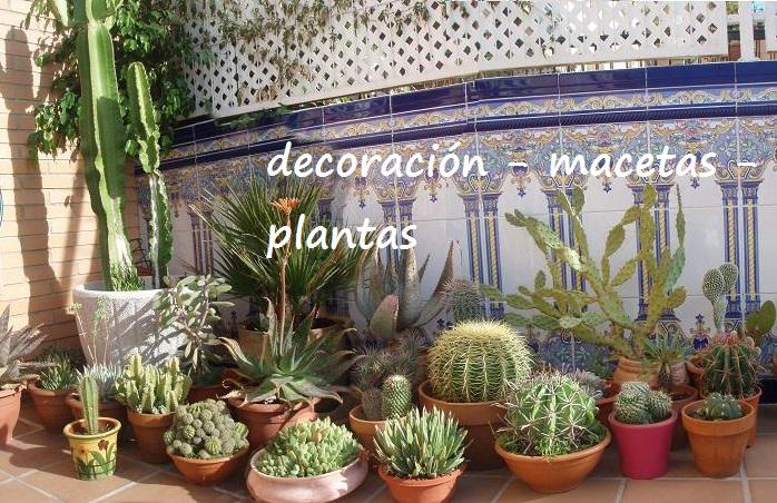 Productos decoraci n idea jardines mantenimiento y for Macetas para exteriores decoracion