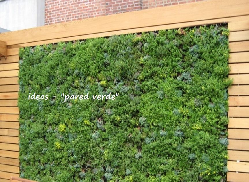 Diseño de jardines y áreas verdes, paisajismo, arquitectura en el DF y Estado de Mexico para particulares, empresas, restaurantes, hoteles, centros comerciales
